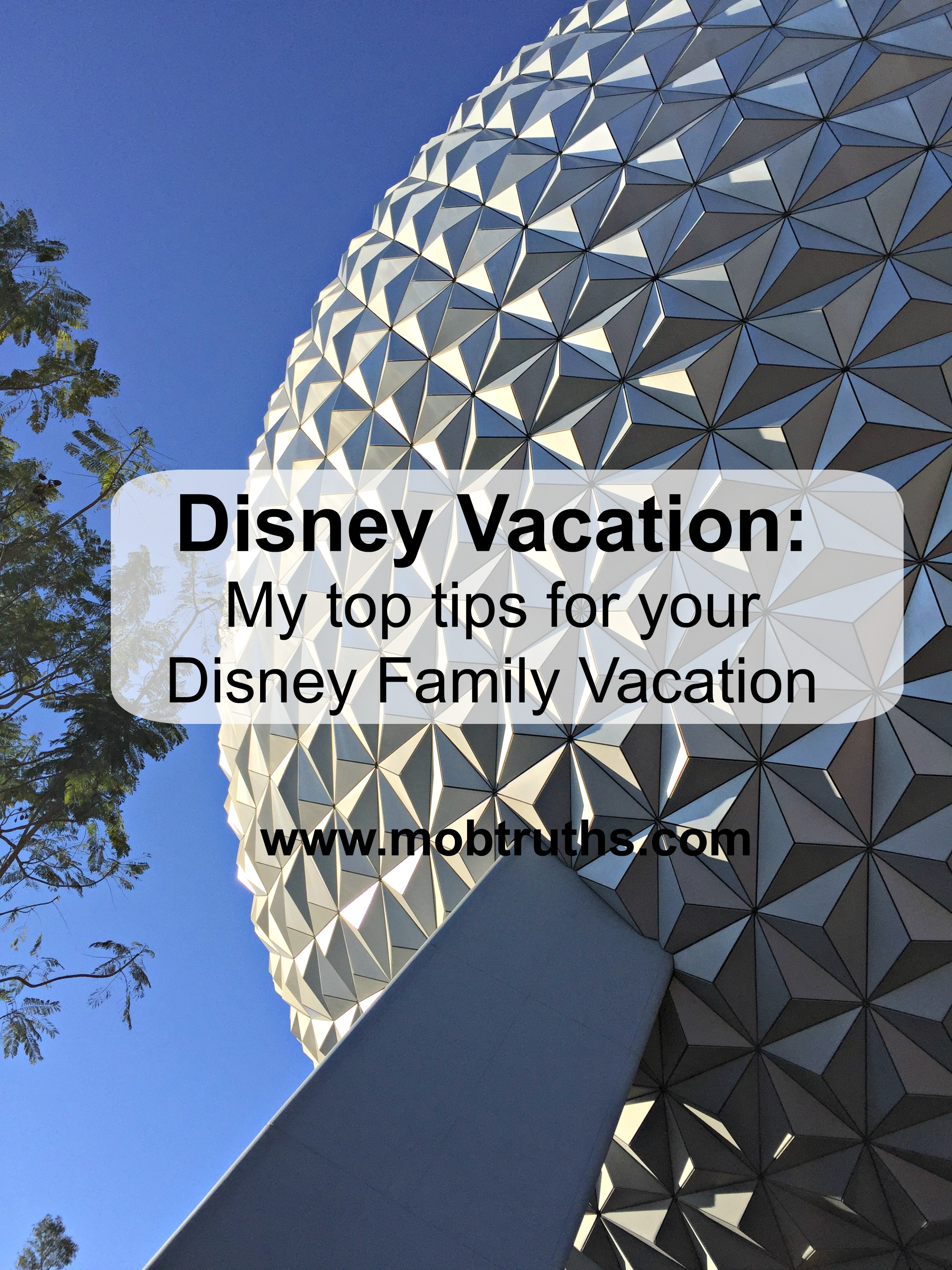 Disney Vacation My top tips for your Disney Family